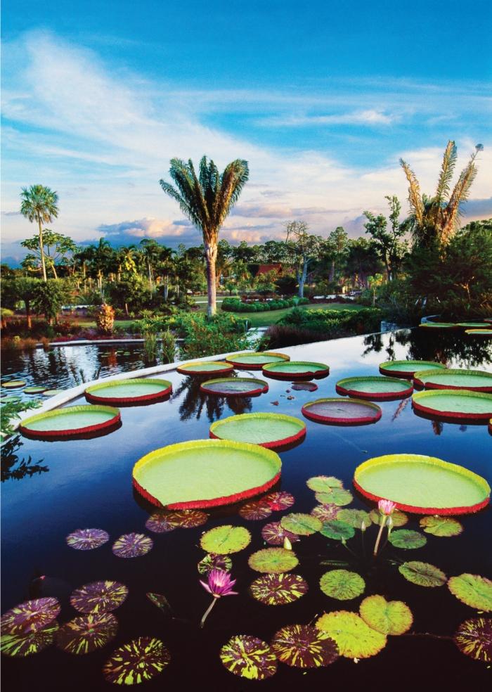 Naples botanical garden discount coupon